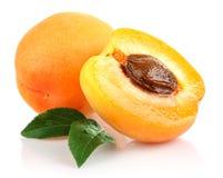 morelowych owoc zielony liść Fotografia Royalty Free