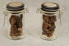 Morels dried closeup Stock Photos