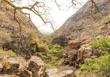 Moremi-Schlucht Botswana lizenzfreies stockbild