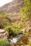 Moremi-Schlucht Botswana lizenzfreies stockfoto