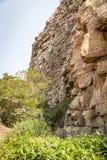 Moremi-Schlucht Botswana stockfotos