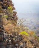 Moremi-Schlucht Botswana stockfoto
