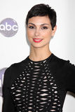 Morena Baccarin Stock Images