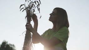 Morena da menina em um vestido verde com um ramalhete das orelhas do trigo no campo filme