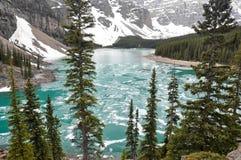 Morena jezioro w wiośnie, Skaliste góry (Kanada) obraz royalty free