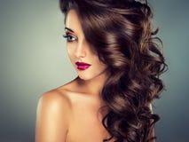 Morena modelo bonita com cabelo ondulado longo Imagens de Stock