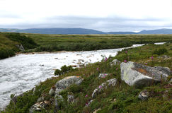 Morenekreek, Alaska Royalty-vrije Stock Fotografie