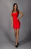 Morenita adulta voluptuosa en vestido rojo atractivo en fondo gris Imagenes de archivo