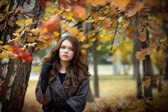 Morenita con el pelo rizado largo contra la perspectiva de la naturaleza del otoño Imagen de archivo