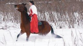 Morenita joven atractiva en un vestido rojo que camina en un caballo a través de la nieve en el invierno metrajes