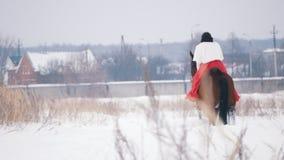 Morenita joven atractiva en un vestido rojo que camina en un caballo a través del campo nevado en el invierno metrajes