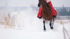 Morenita joven atractiva en un vestido rojo que galopa rápidamente en un caballo a través del campo nevado en el invierno almacen de video