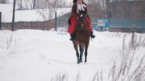 Morenita joven en un vestido rojo que activa rápidamente en un caballo a través del campo nevado en el invierno almacen de metraje de vídeo