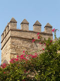 Moresque tower in Malaga. A fortified tower of the Alcazaba's fortess of Malaga and lilla flowers stock image