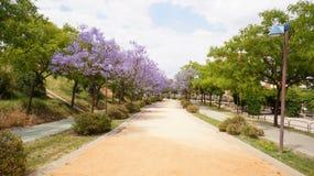 The Moret Park of Huelva Royalty Free Stock Image