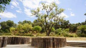 The Moret Park of Huelva Royalty Free Stock Photo
