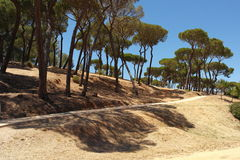 The Moret Park of Huelva Royalty Free Stock Images