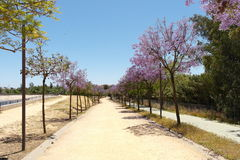 The Moret Park of Huelva Stock Photography
