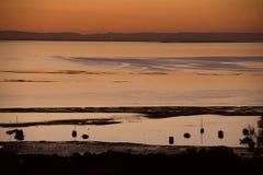 Moreton Bay stock image