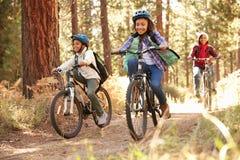 Morföräldrar med barn som cyklar till och med nedgångskogsmark Royaltyfri Bild