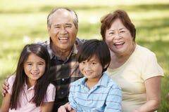 Morföräldrar och barnbarn för stående parkerar asiatiska in Fotografering för Bildbyråer