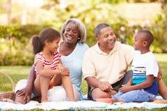 Morföräldrar och barnbarn som har picknicken i trädgård arkivbilder