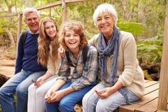Morföräldrar och tonår som sitter på en bro i en skog arkivfoto