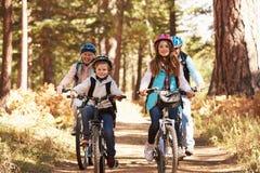 Morföräldrar och ungar som cyklar på skog, skuggar, Kalifornien arkivbild