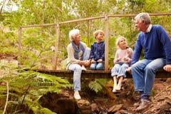 Morföräldrar som sitter med grandkids på en bro i en skog arkivfoto