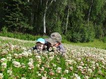 Morfadern och sonsonen söker efter växt av släktet Trifolium Fotografering för Bildbyråer