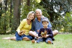 Morföräldrar på parken Arkivfoto