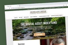 Morgan Creek Website Homepage image stock