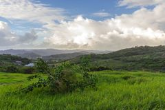 A view from Morgan Lewis plantation in St. Andrew, Barbados royalty free stock photo