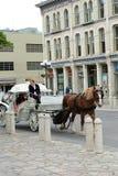 Morgan Work Horse och vagn Royaltyfria Foton