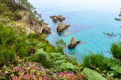 Morgat, sea view from the cliffs in Brittany Royalty Free Stock Image