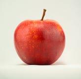 MORGEDUF在白色背景的红色苹果计算机 免版税库存图片
