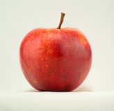 MORGEDUF RED APPLE ON WHITE BACKGROUND Royalty Free Stock Image