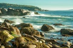 Morgen auf dem Atlantikküste-Nationalpark von Acadia US maine stockfotos