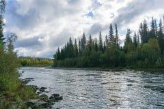 Morgen auf dem Fluss lizenzfreies stockfoto
