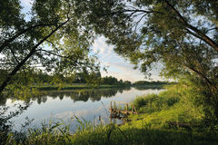 Morgen auf dem Fluss. Lizenzfreie Stockfotos