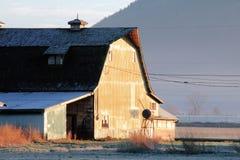 Morgen auf einem Bauernhof Stockbilder