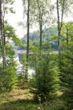 Morgen auf einem schönen See Stockbilder