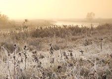 Morgen auf Herbst gefrorenem Fluss Lizenzfreie Stockfotos