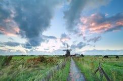 Morgen auf niederländischem Ackerland mit Windmühle Lizenzfreie Stockfotos