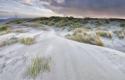 Morgen auf Sanddünen durch Küste lizenzfreie stockfotos