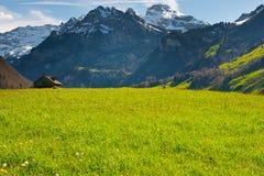 Morgen in den Alpen Lizenzfreie Stockfotos