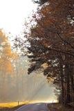 Morgen im Herbst lizenzfreies stockfoto