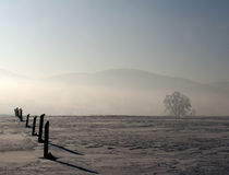 Morgen im Schnee Lizenzfreies Stockfoto