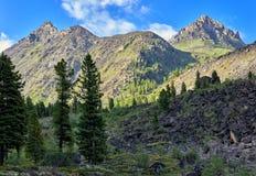 Morgen im sibirischen Bergsonnenlicht lizenzfreie stockfotos