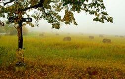 Morgen im Tal Stockbilder